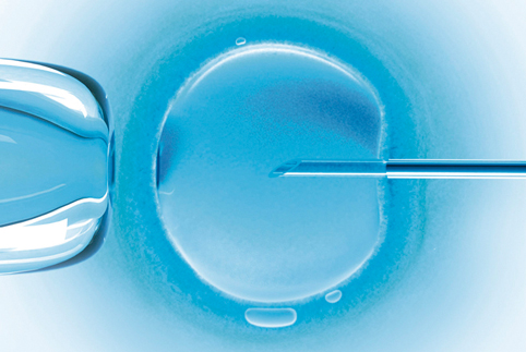 Most advanced techniques for assisted reproduction and other fertility treatments